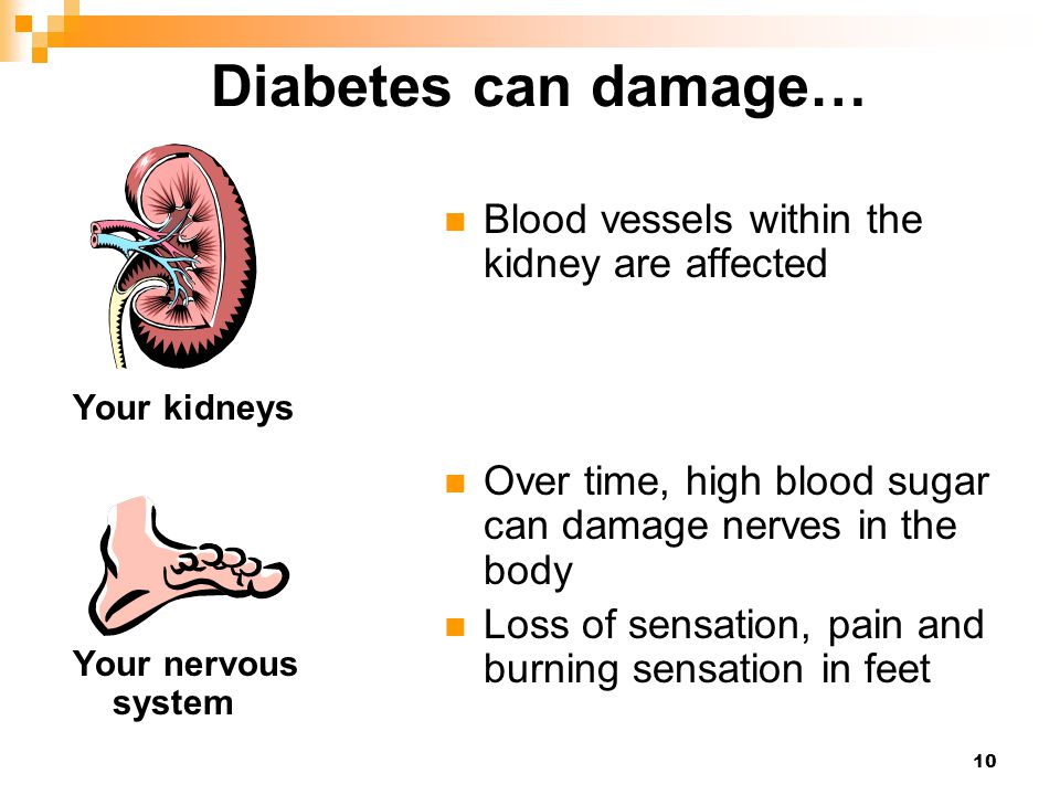 10 Diabetes can damage… Blood vessels within the kidney are affected Over time, high blood sugar can damage nerves in the body Loss of sensation, pain