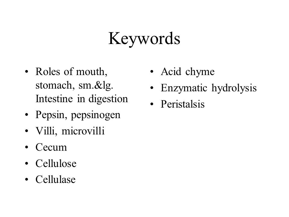 Keywords Roles of mouth, stomach, sm.&lg. Intestine in digestion Pepsin, pepsinogen Villi, microvilli Cecum Cellulose Cellulase Acid chyme Enzymatic h