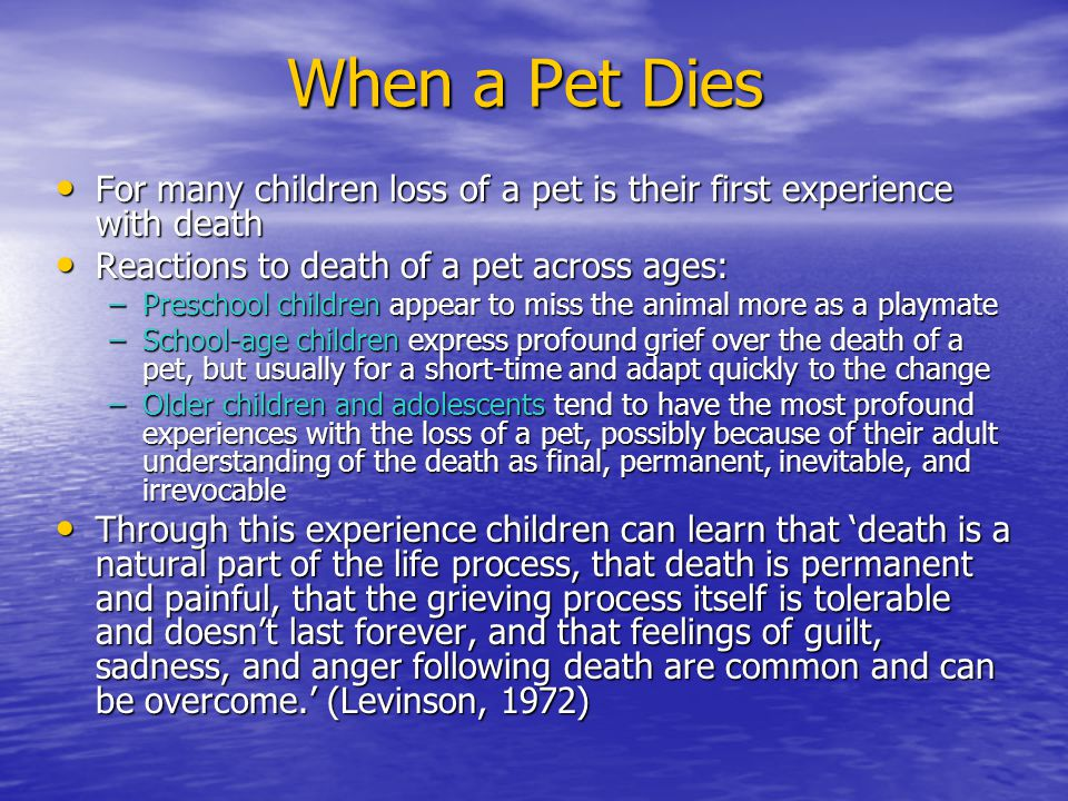 When a Pet Dies For many children loss of a pet is their first experience with death For many children loss of a pet is their first experience with death Reactions to death of a pet across ages: Reactions to death of a pet across ages: –Preschool children appear to miss the animal more as a playmate –School-age children express profound grief over the death of a pet, but usually for a short-time and adapt quickly to the change –Older children and adolescents tend to have the most profound experiences with the loss of a pet, possibly because of their adult understanding of the death as final, permanent, inevitable, and irrevocable Through this experience children can learn that 'death is a natural part of the life process, that death is permanent and painful, that the grieving process itself is tolerable and doesn't last forever, and that feelings of guilt, sadness, and anger following death are common and can be overcome.' (Levinson, 1972) Through this experience children can learn that 'death is a natural part of the life process, that death is permanent and painful, that the grieving process itself is tolerable and doesn't last forever, and that feelings of guilt, sadness, and anger following death are common and can be overcome.' (Levinson, 1972)