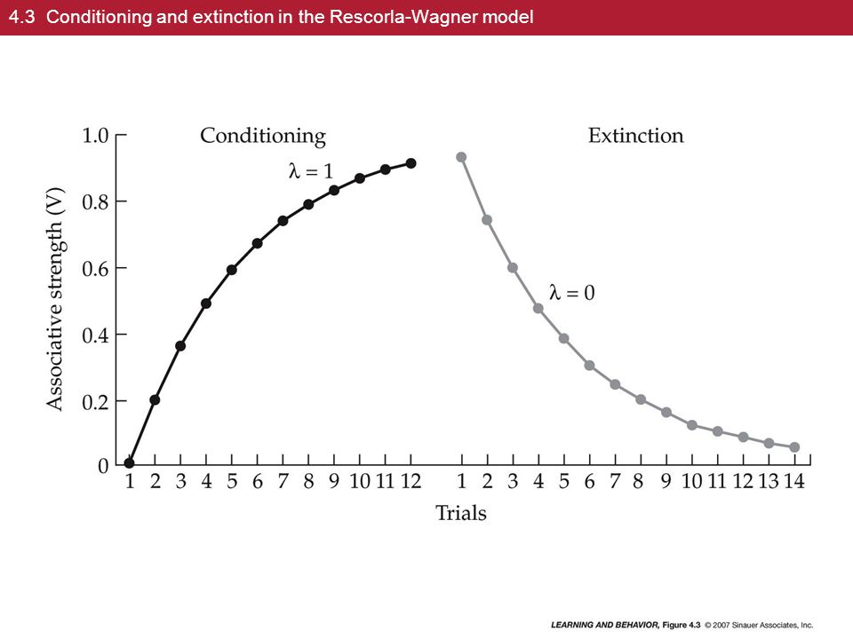 4.3 Conditioning and extinction in the Rescorla-Wagner model