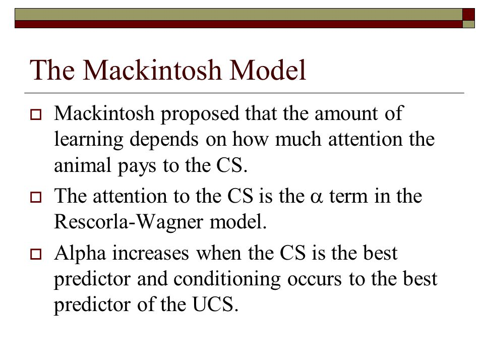 The Mackintosh Model  Mackintosh proposed that the amount of learning depends on how much attention the animal pays to the CS.  The attention to the
