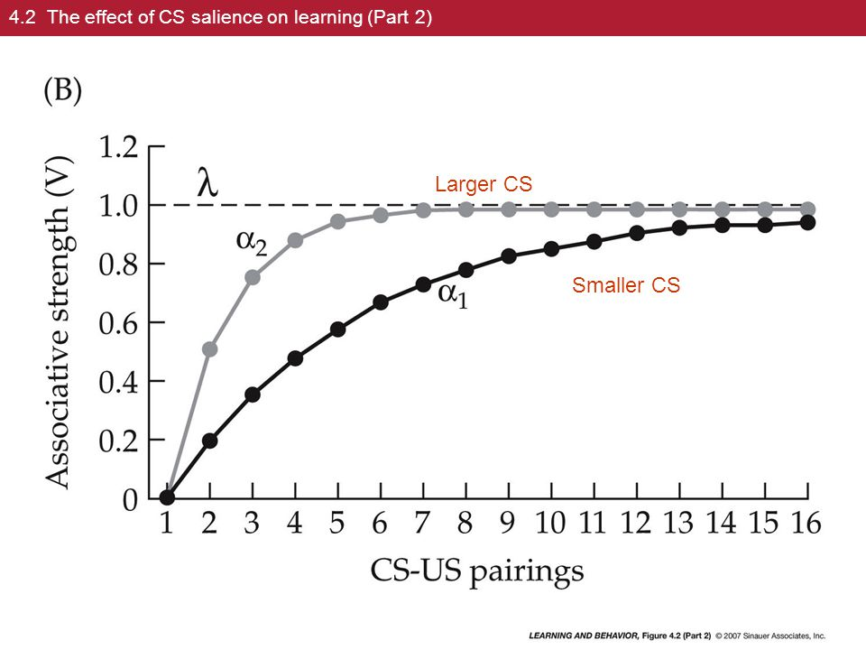 Multiple Conditioned Stimuli (CS's)  The basic model explains changes in learning with one UCS and one CS.