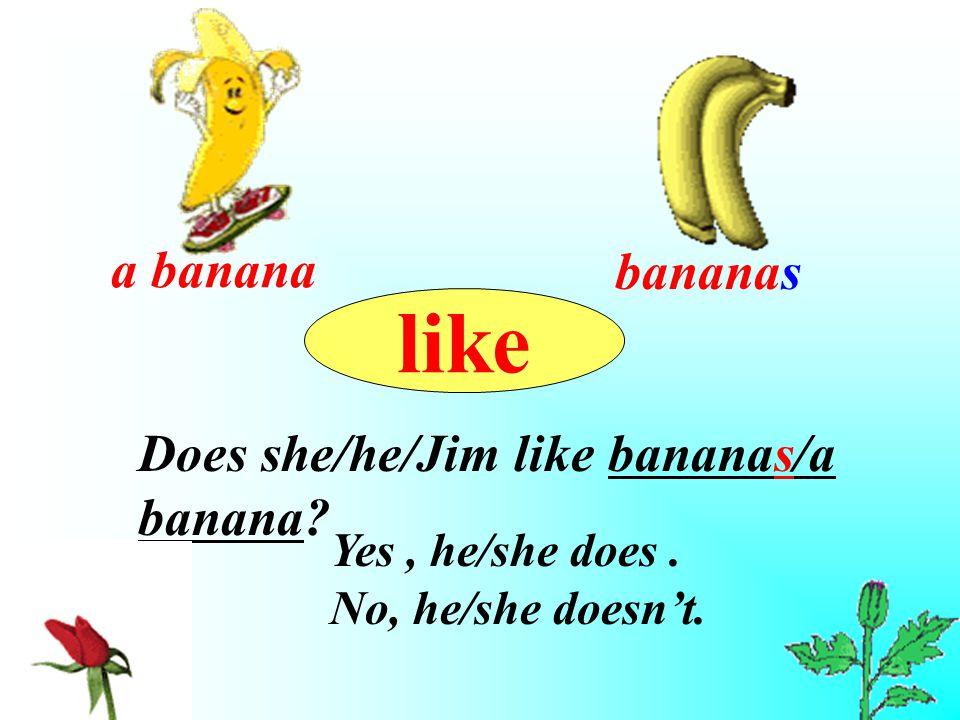 bananas Does she/he/Jim like bananas/a banana? Yes, he/she does. No, he/she doesn't. like a banana