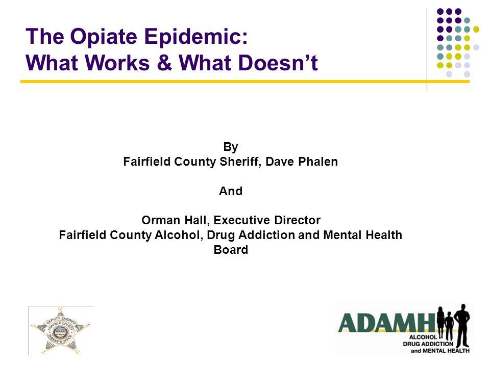 What works Law enforcement Treatment Education Drug Court Non-conventional: Grace Haven