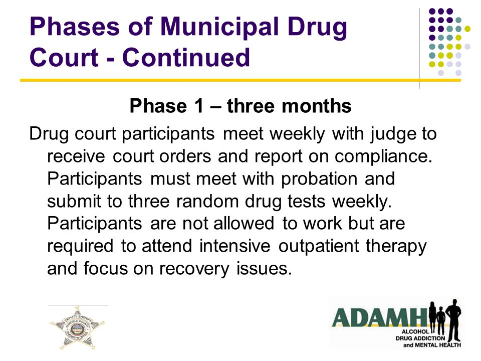 Phases of Municipal Drug Court - Continued Phase 1 – three months Drug court participants meet weekly with judge to receive court orders and report on compliance.