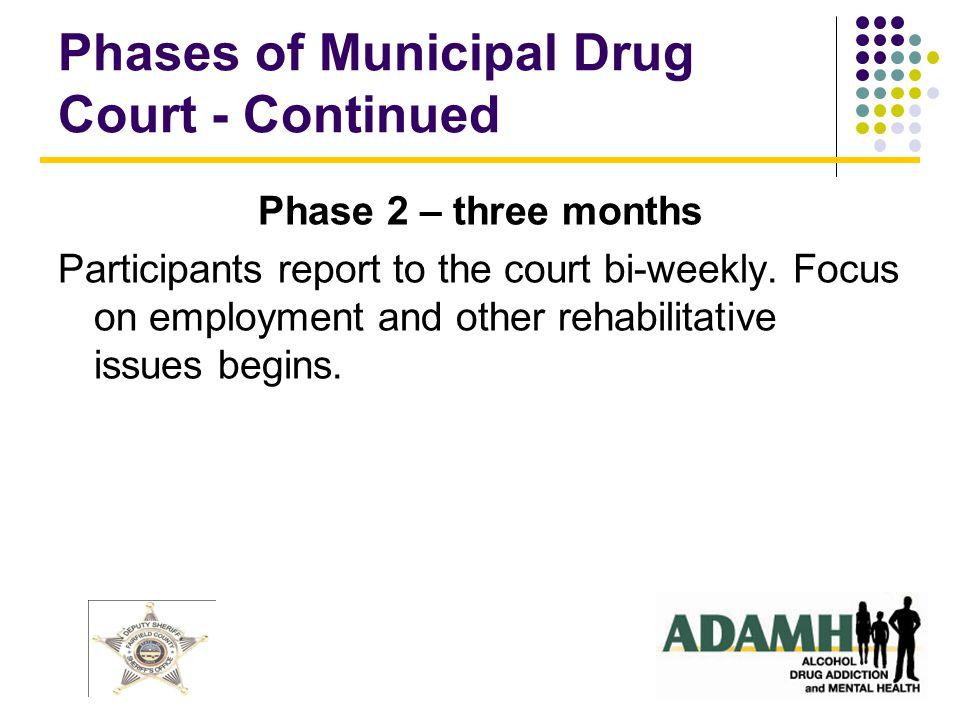 Phases of Municipal Drug Court - Continued Phase 2 – three months Participants report to the court bi-weekly.