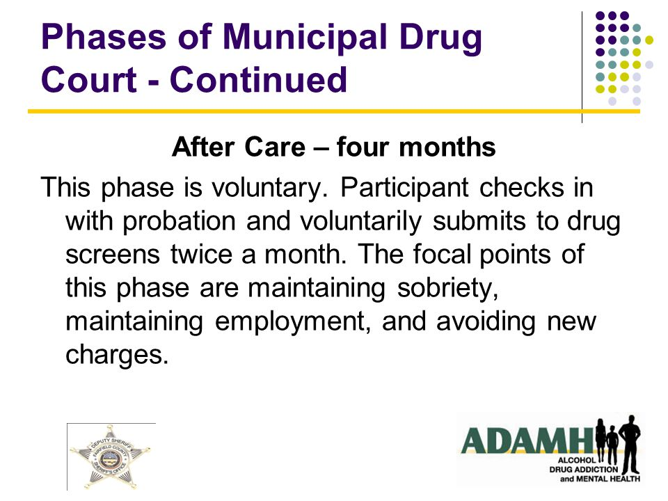 Phases of Municipal Drug Court - Continued After Care – four months This phase is voluntary.