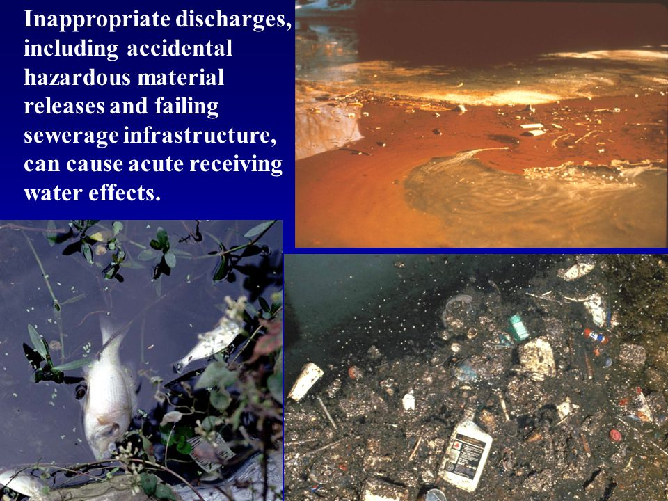 Inappropriate discharges, including accidental hazardous material releases and failing sewerage infrastructure, can cause acute receiving water effect
