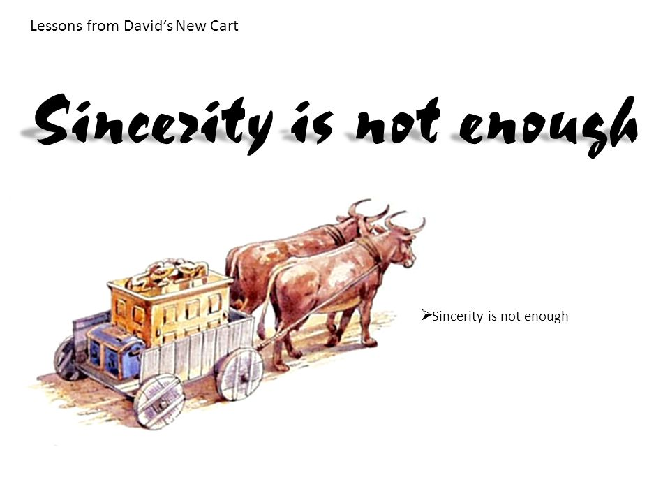 Lessons from David's New Cart  Sincerity is not enough Sincerity is not enough