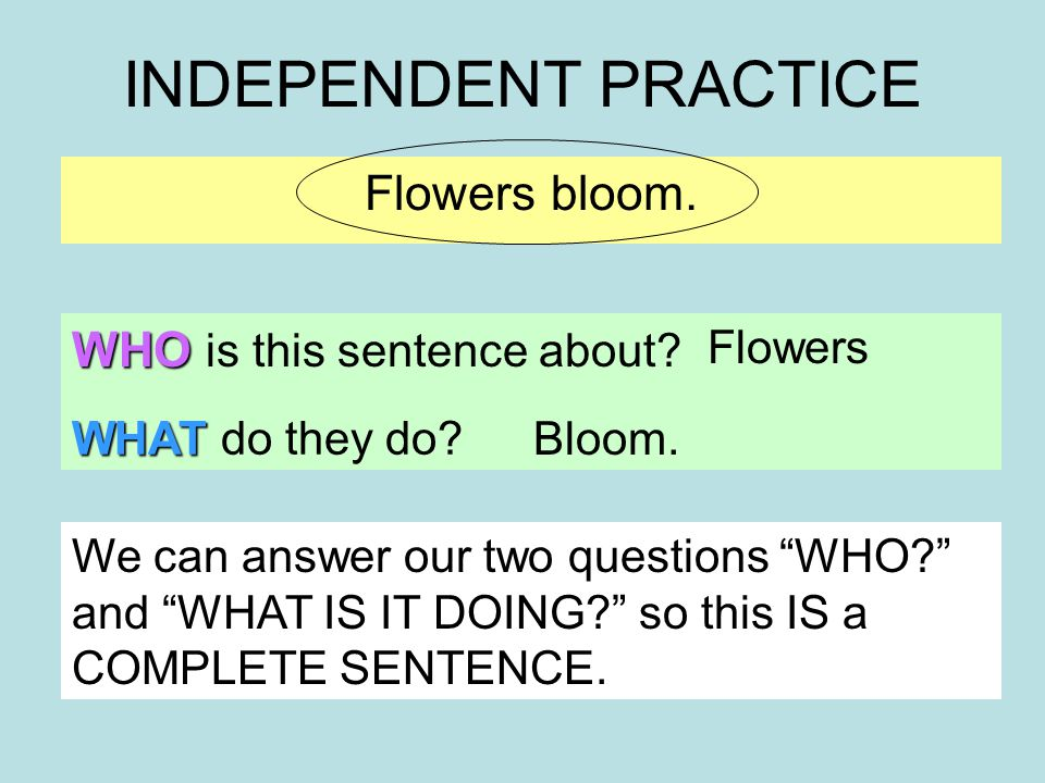 INDEPENDENT PRACTICE Flowers bloom. WHO is this sentence about.