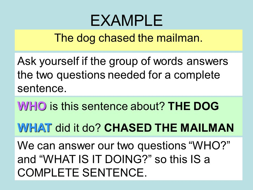 EXAMPLE The dog chased the mailman. WHO is this sentence about.