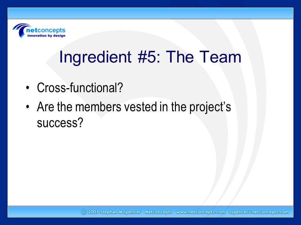 Ingredient #5: The Team Cross-functional Are the members vested in the project's success