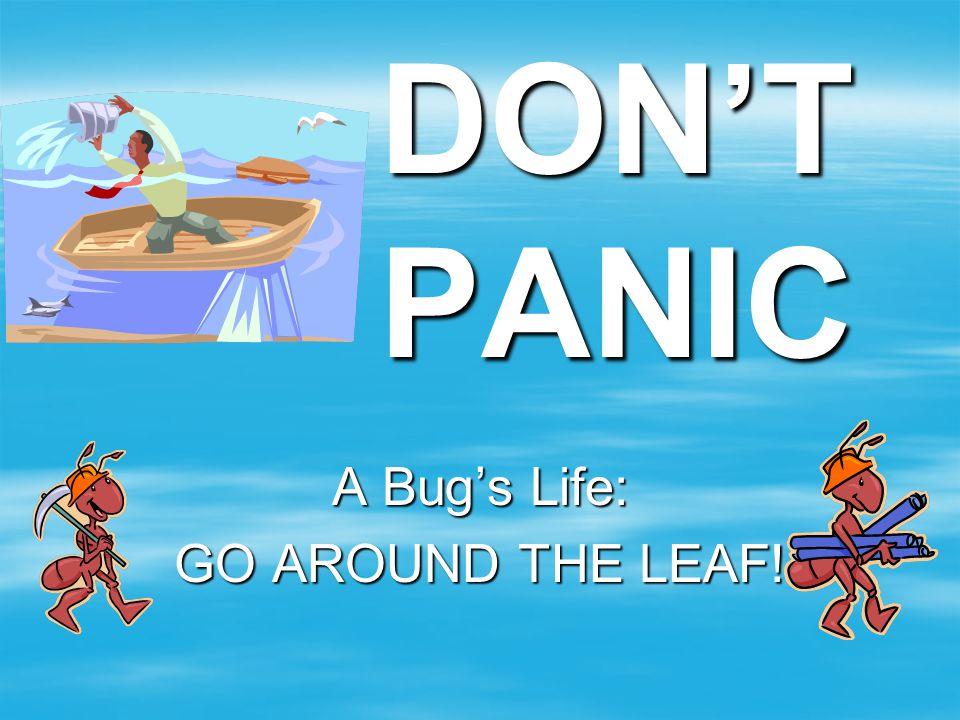 DON'T PANIC A Bug's Life: GO AROUND THE LEAF!