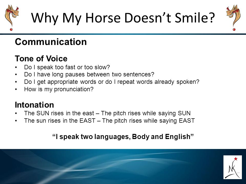 Why My Horse Doesn't Smile.Communication Tone of Voice Do I speak too fast or too slow.