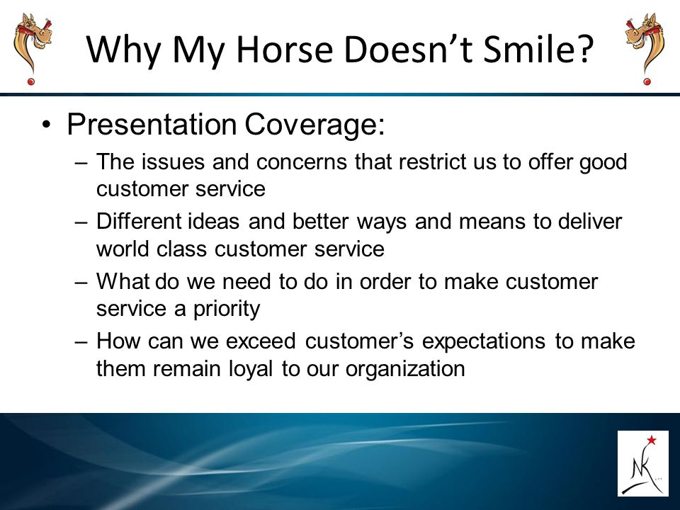 Why My Horse Doesn't Smile? Presentation Coverage: –The issues and concerns that restrict us to offer good customer service –Different ideas and bette