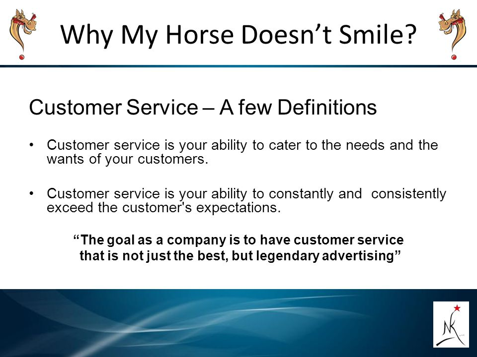 Why My Horse Doesn't Smile? Customer Service – A few Definitions Customer service is your ability to cater to the needs and the wants of your customer
