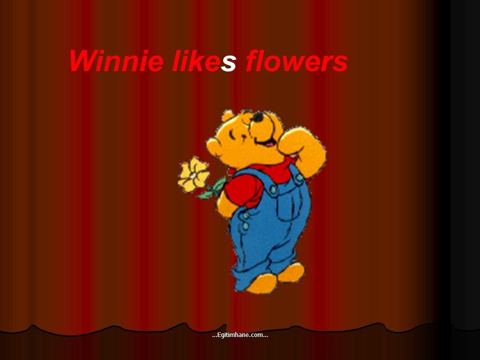 Winnie likes flowers …Egitimhane.com…