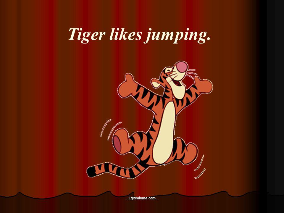 Tiger likes jumping. …Egitimhane.com…