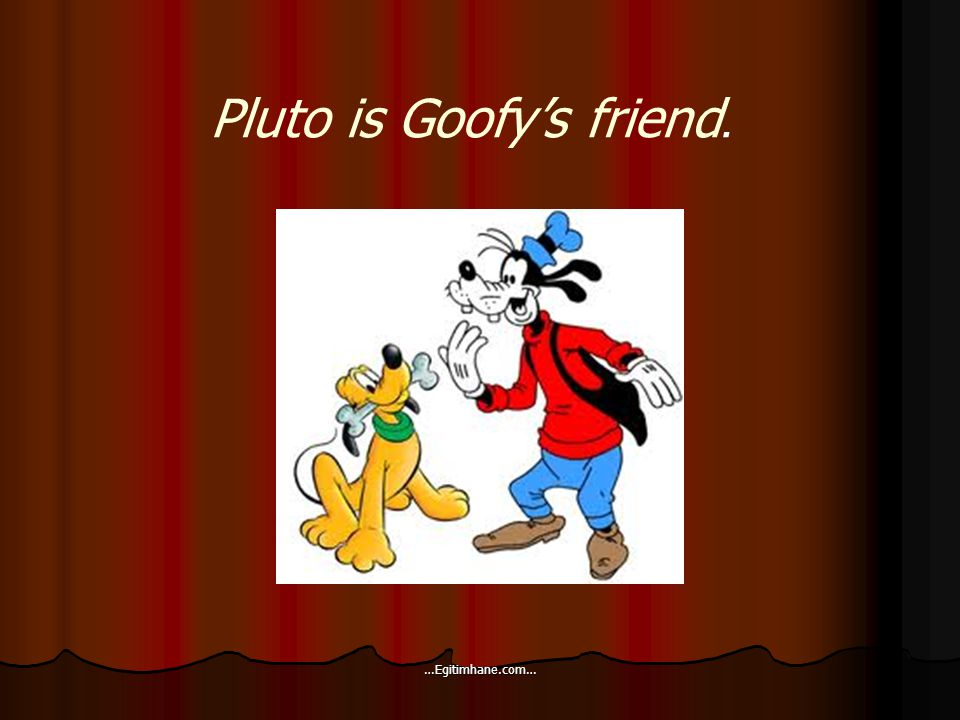 Pluto is Goofy's friend. …Egitimhane.com…