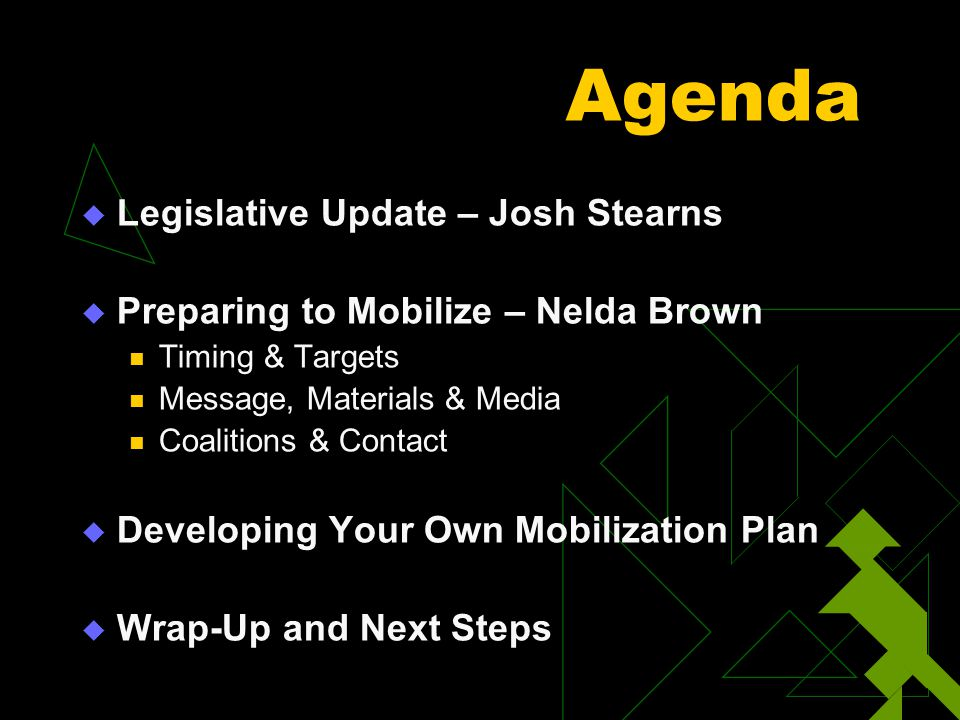 Agenda  Legislative Update – Josh Stearns  Preparing to Mobilize – Nelda Brown Timing & Targets Message, Materials & Media Coalitions & Contact  De