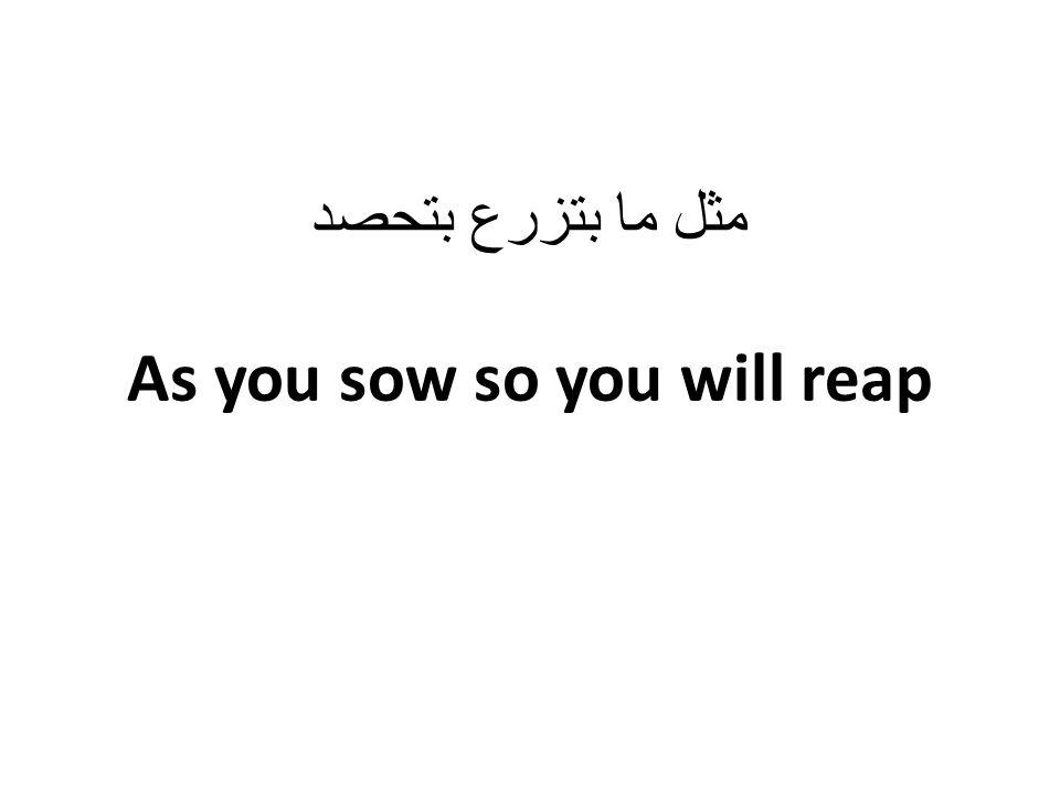 مثل ما بتزرع بتحصد As you sow so you will reap