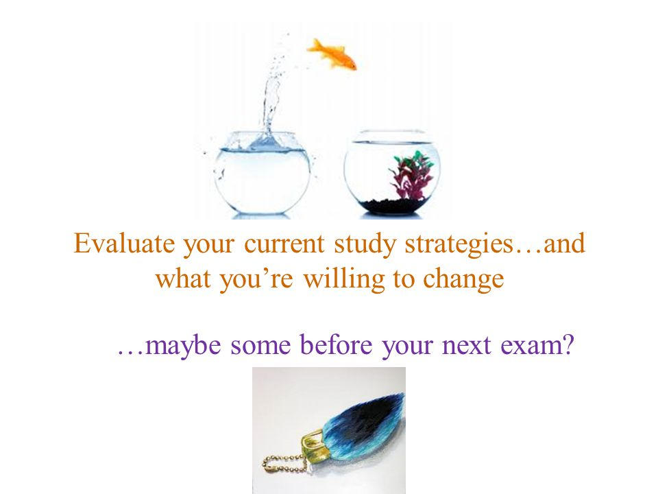 Evaluate your current study strategies…and what you're willing to change …maybe some before your next exam