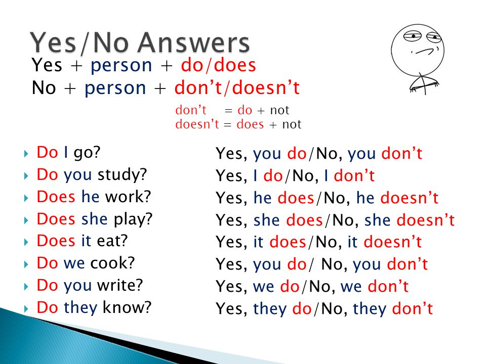 Yes + person + do/does No + person + don't/doesn't  Do I go?  Do you study?  Does he work?  Does she play?  Does it eat?  Do we cook?  Do you w