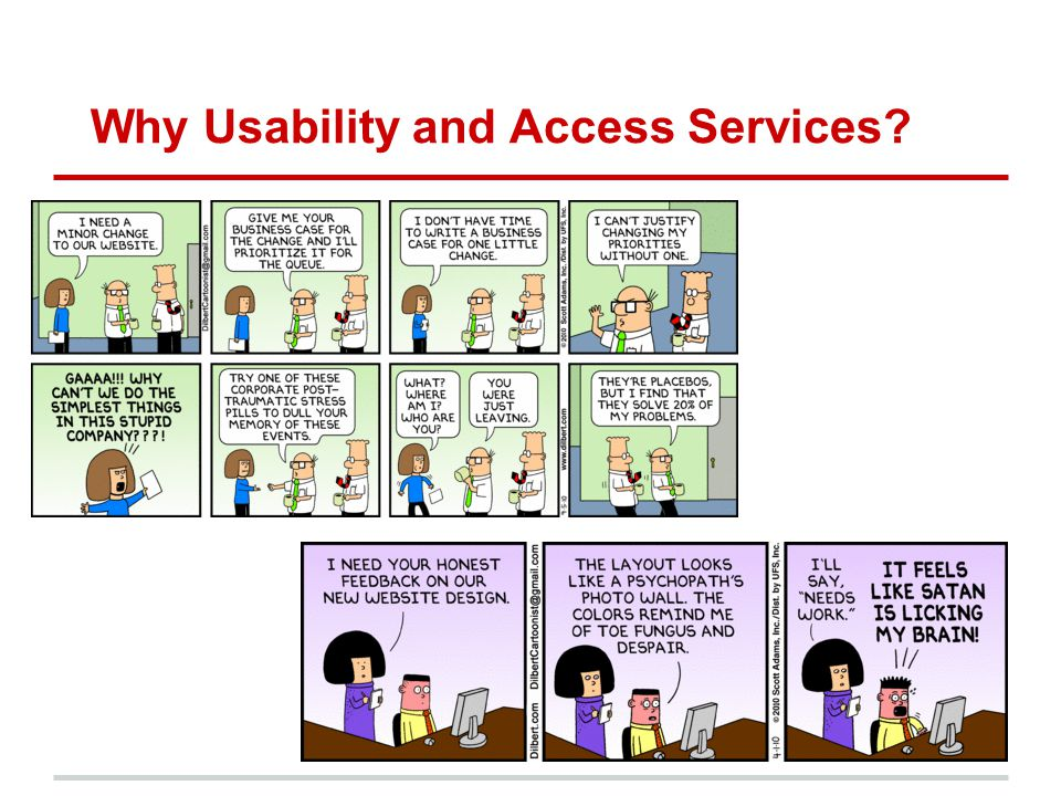 Why Usability and Access Services?