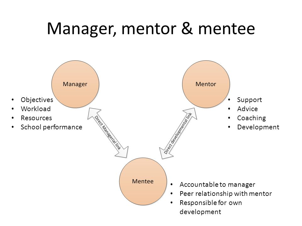 Manager, mentor & mentee Support Advice Coaching Development Accountable to manager Peer relationship with mentor Responsible for own development Objectives Workload Resources School performance