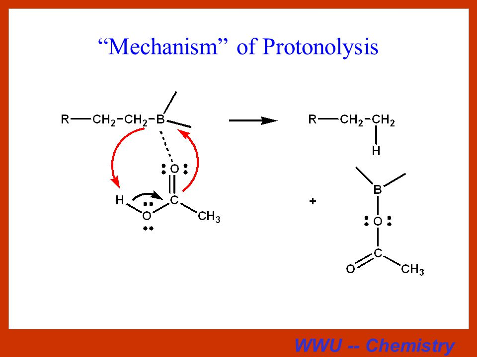 WWU -- Chemistry Examples of Hydroboration-Protonolysis