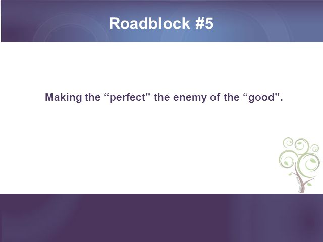 Roadblock #5 Making the perfect the enemy of the good .
