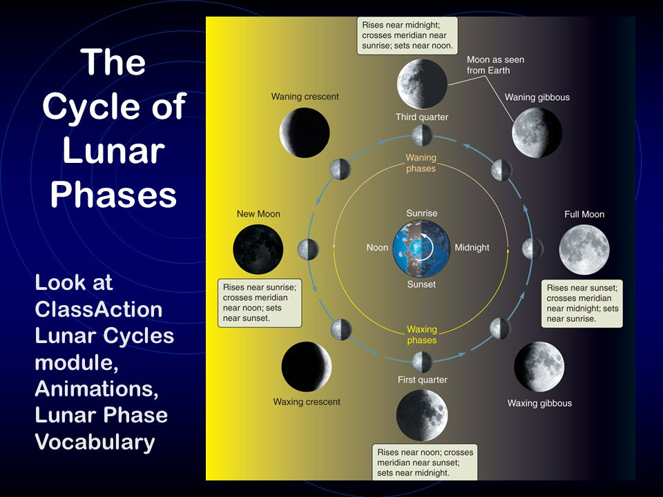 The Cycle of Lunar Phases Look at ClassAction Lunar Cycles module, Animations, Lunar Phase Vocabulary