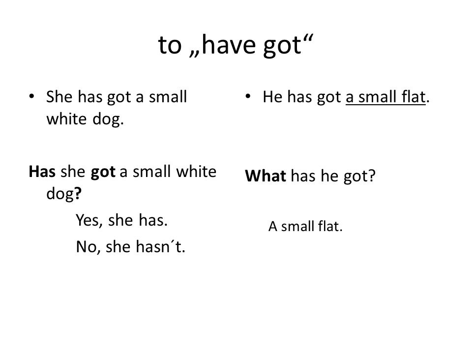 "to ""have got She has got a small white dog. Has she got a small white dog."