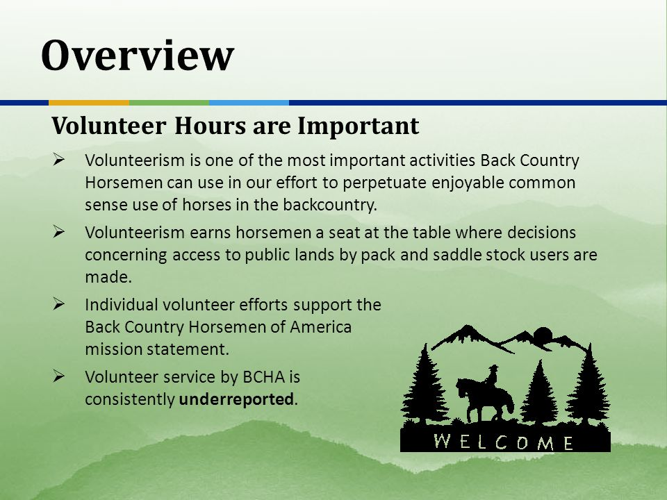 Volunteer Hours are Important  Volunteerism is one of the most important activities Back Country Horsemen can use in our effort to perpetuate enjoyable common sense use of horses in the backcountry.