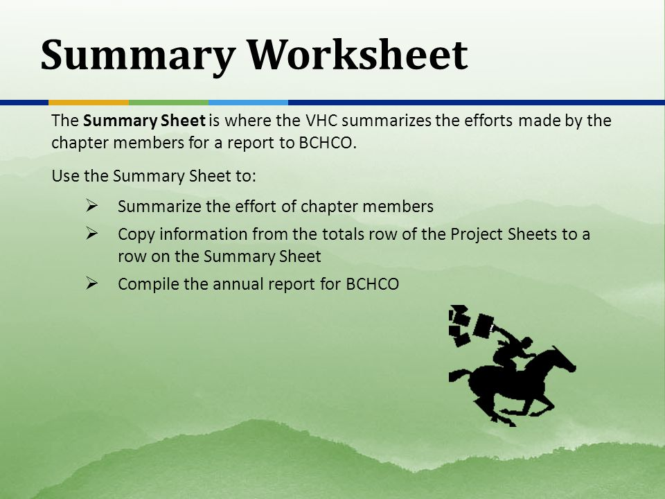 Summary Worksheet The Summary Sheet is where the VHC summarizes the efforts made by the chapter members for a report to BCHCO. Use the Summary Sheet t