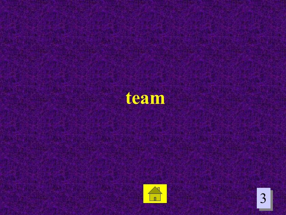 3 3 team