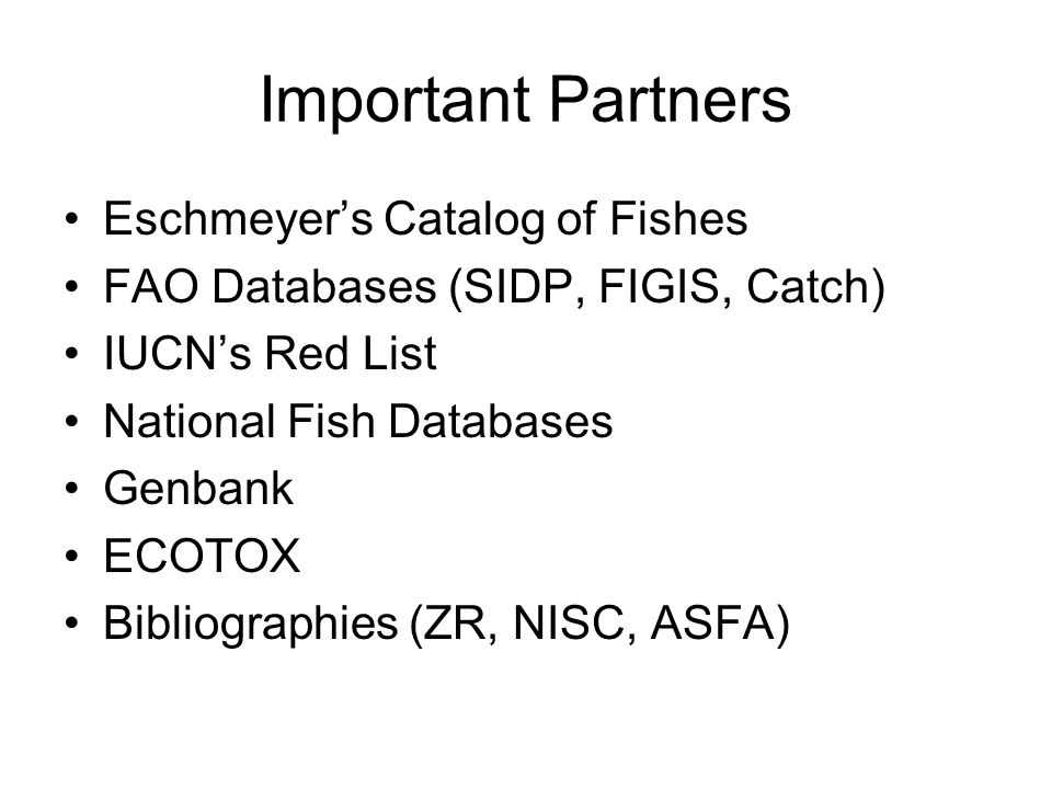 Important Partners Eschmeyer's Catalog of Fishes FAO Databases (SIDP, FIGIS, Catch) IUCN's Red List National Fish Databases Genbank ECOTOX Bibliographies (ZR, NISC, ASFA)