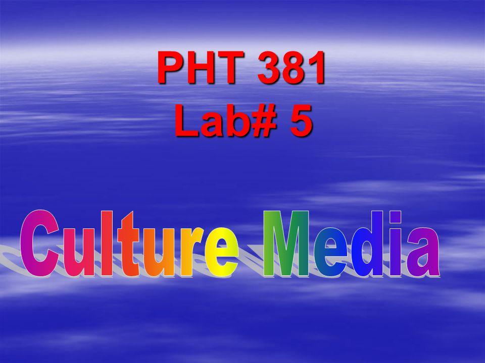 PHT 381 Lab# 5