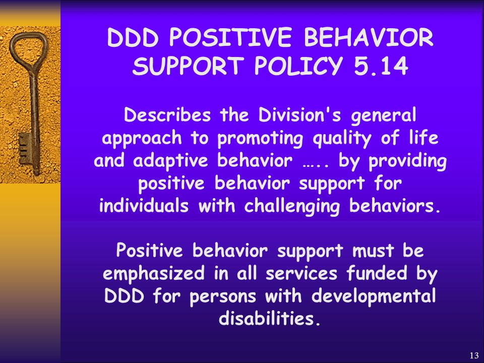12 Supporting Persons With Challenging Behaviors Tom James Ph.D.