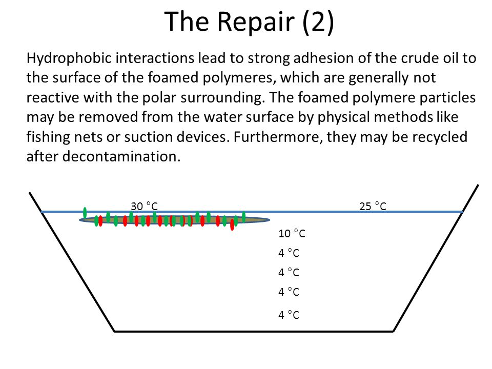 The Repair (2) 4 °C 10 °C 25 °C30 °C Hydrophobic interactions lead to strong adhesion of the crude oil to the surface of the foamed polymeres, which are generally not reactive with the polar surrounding.