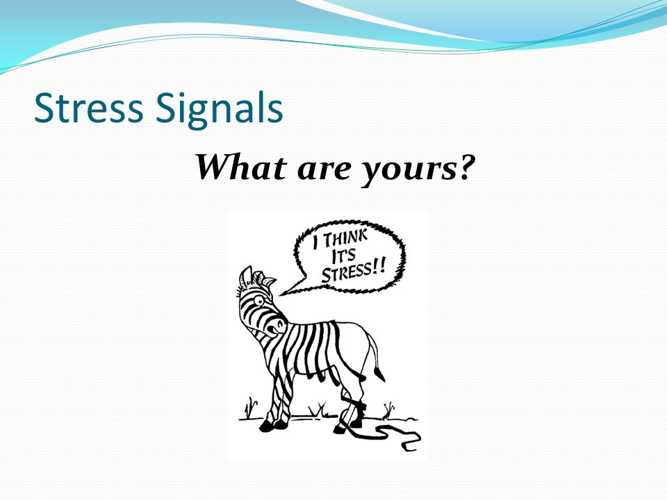 Stress Signals What are yours?