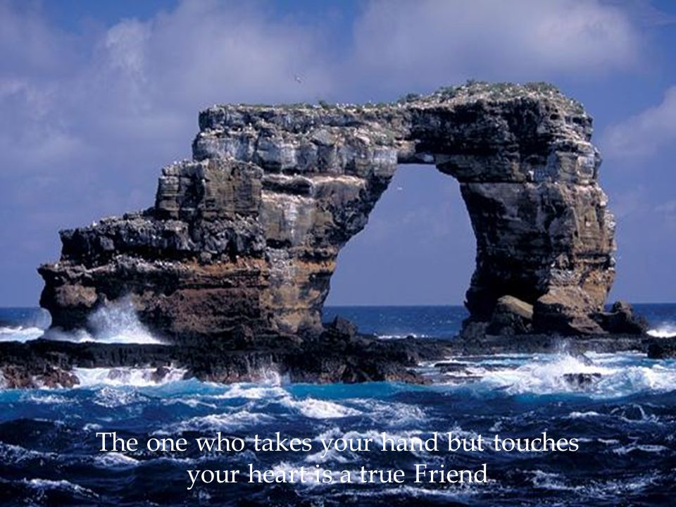 The one who takes your hand but touches your heart is a true Friend