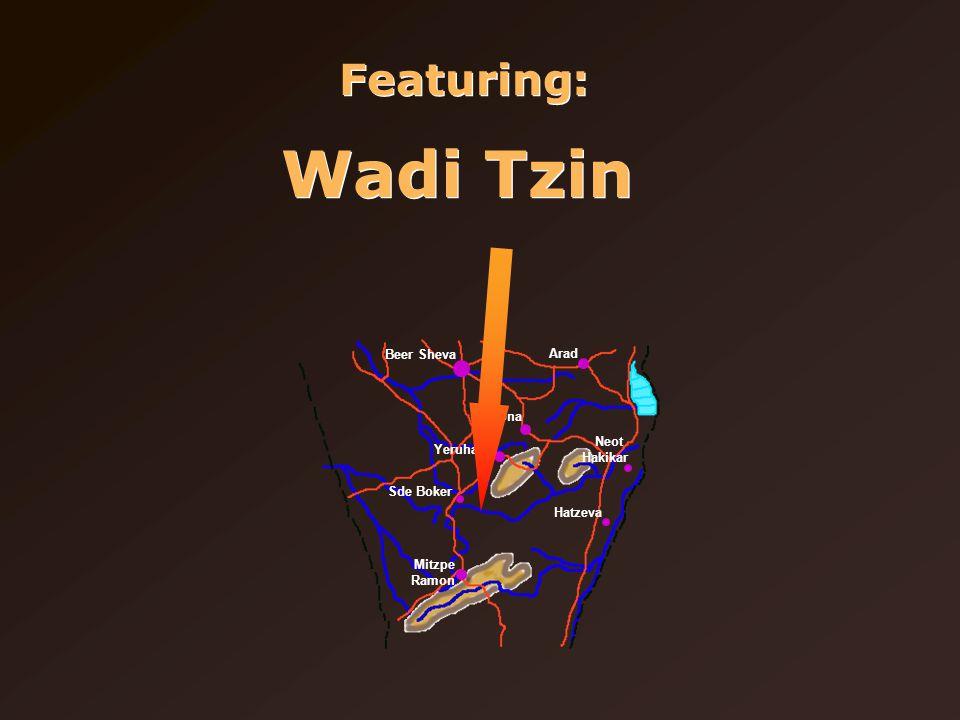 Featuring: Wadi Tzin Beer Sheva Arad Dimona Yeruham Sde Boker Mitzpe Ramon Neot Hakikar Hatzeva