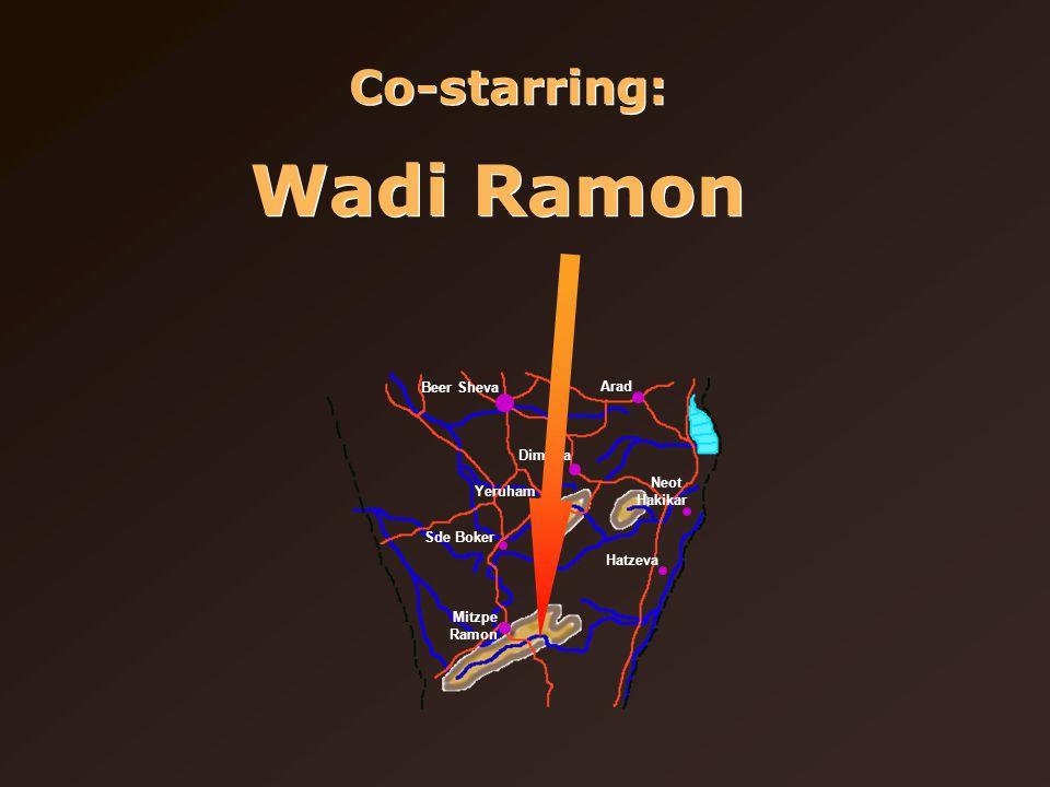Co-starring: Wadi Ramon Beer Sheva Arad Dimona Yeruham Sde Boker Mitzpe Ramon Neot Hakikar Hatzeva