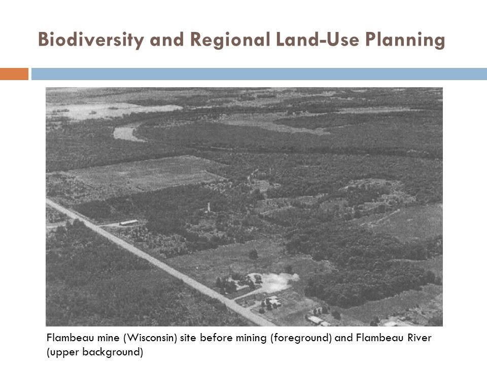 Biodiversity and Regional Land-Use Planning Flambeau mine (Wisconsin) site before mining (foreground) and Flambeau River (upper background)