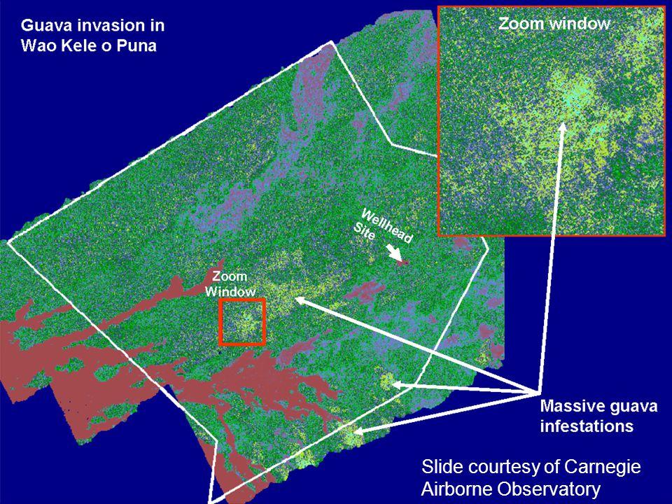 Slide courtesy of Carnegie Airborne Observatory