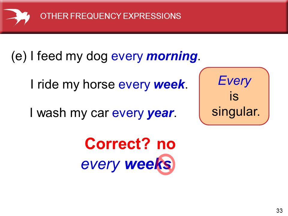33 every weeks (e) I feed my dog every morning. I ride my horse every week. I wash my car every year. Every is singular. Correct?no OTHER FREQUENCY EX