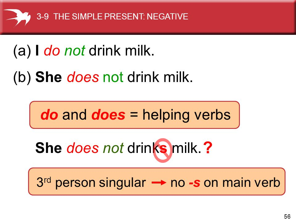 56 She does not drinks milk. 3 rd person singular no -s on main verb 3-9 THE SIMPLE PRESENT: NEGATIVE (a) I do not drink milk. (b) She does not drink
