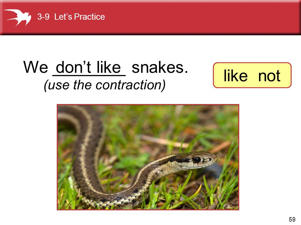 59 We ________ snakes.don't like (use the contraction) 3-9 Let's Practice like not