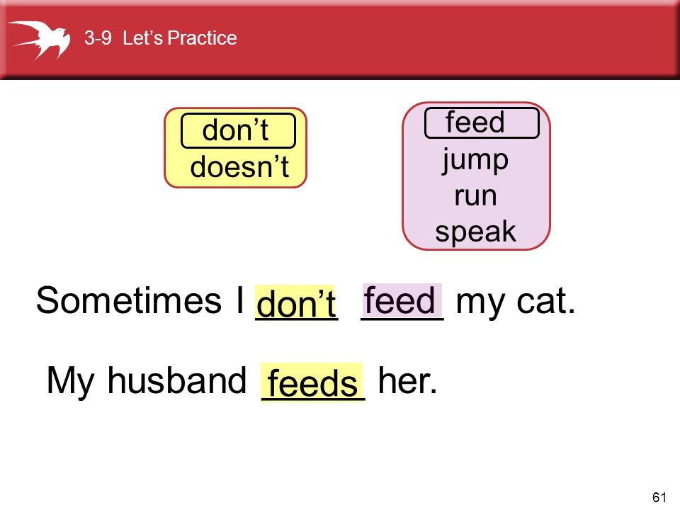 61 feed don't feeds 3-9 Let's Practice don't doesn't feed jump run speak Sometimes I ____ ____ my cat. My husband _____ her.